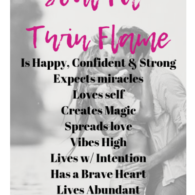 Soul Fit Twin Flame Manifesto